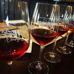 Exploring Wine Country in Michigan: Part 1
