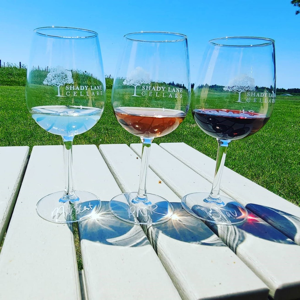 Shady Lane Cellars, Best Winery in Traverse City Michigan